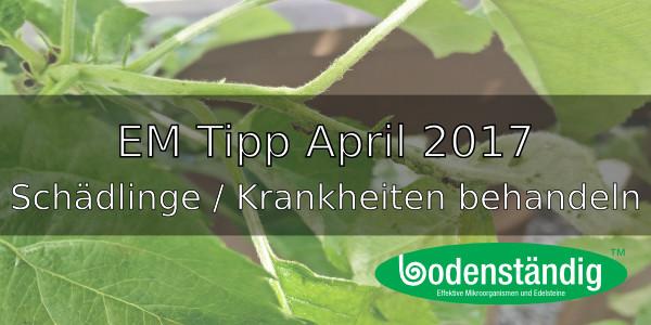 EM Tipp April 2017