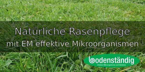 Rasenpflege mit den EM effektiven Mikroorganismen