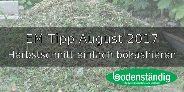 EM Tipp August 2017