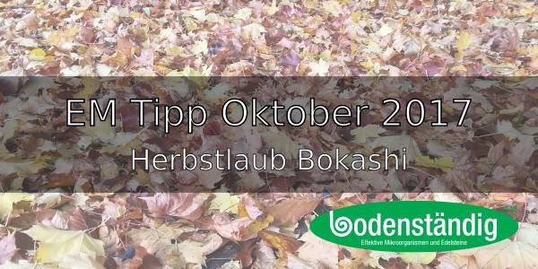 EM Tipp Oktober 2017