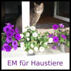 EM für Haustiere