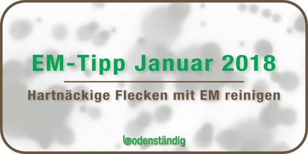EM Tipp im Januar 2018