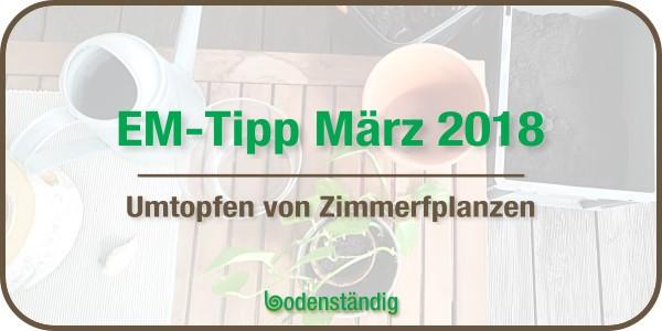 EM Tipp März 2018 - Umtopfen mit EM - Zimmerpflanzen Kübelpflanzen