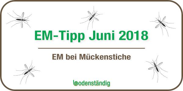 Beitragsbild EM-Tipp im Juni 2018 - EM bei Mückenstichen