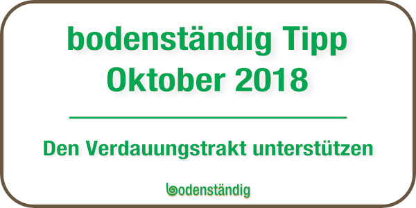 bodenständig EM Tipp für den Monat Oktober 2018