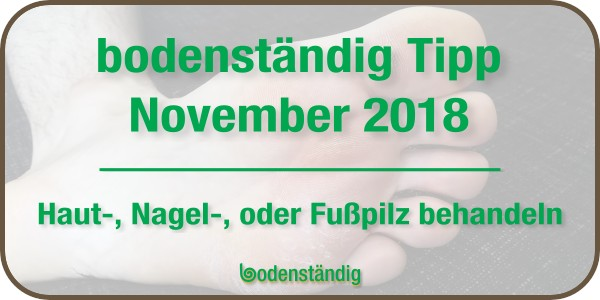 Beitragsbild bodenständig Tipp November 2018 Fußpilz, Hautpilz, Nagelpilz mit EM behandeln