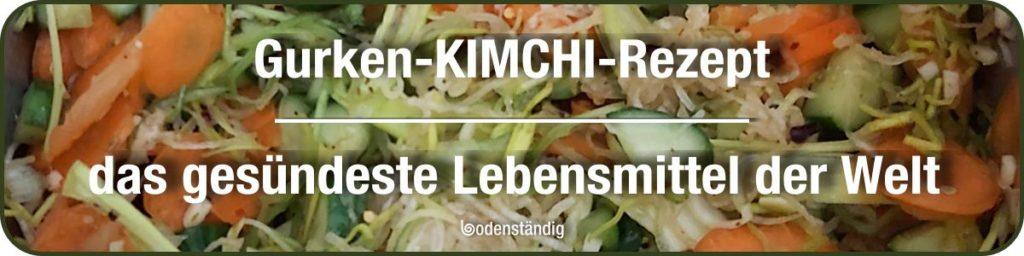 Kimchi-Rezept